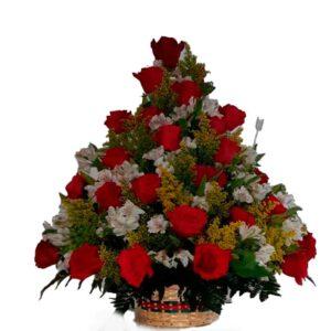 Florerías en ciénegas