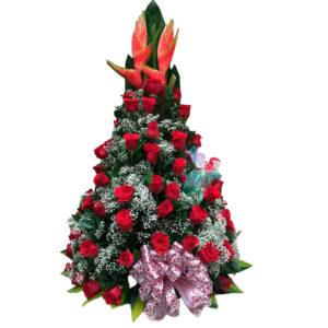Rosas y peluches a toda Santa Marta