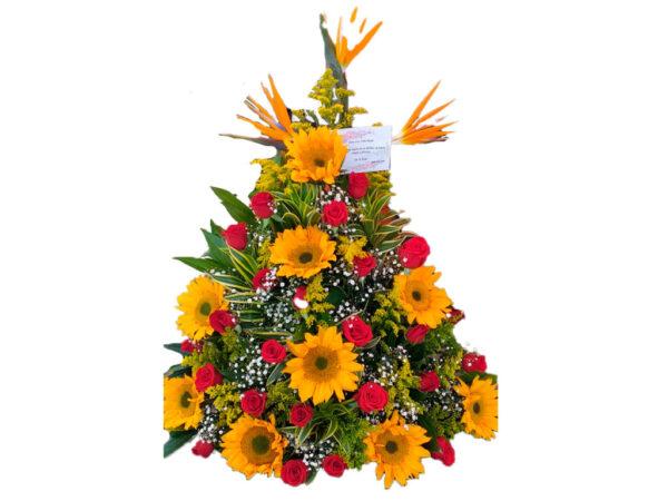 Flores exóticas en santa marta