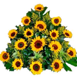 Flores preservadas en Santa Marta