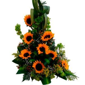 Flores a domicilio en el rodadero